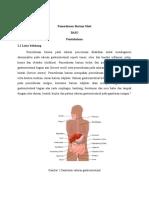 Referat radiologi barium meal-1