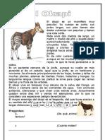 Descripción El Okapi