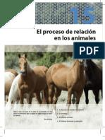 8448154630-relacion en animales