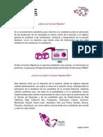 ConteosRapidos Descrip General 2021