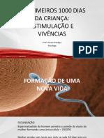 OS PRIMEIROS 1000 DIAS DA CRIANÇA (1)