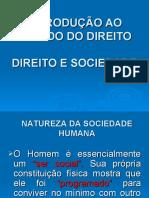 AULA 02 DIREITO E SOCIEDADE