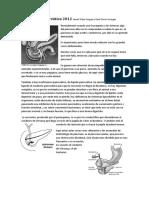 Secreción Pancreática 2012