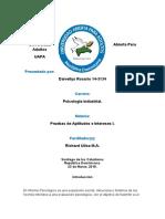 Actividad II Pruebas de Apt. e Int. I D.R.T
