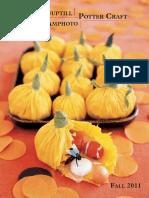 Amphoto, Potter Craft and Watson-Guptill Fall 2011 Catalog
