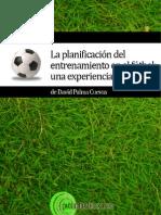 Planificacion Futbol - David Palma Cueva