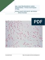 Pseudomonas spp