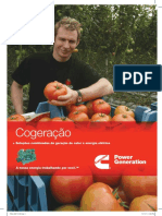 cogeneration_pt-08