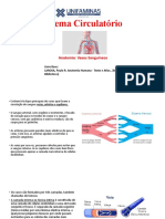 Sistemas Circulatório Vasos Sanguineos