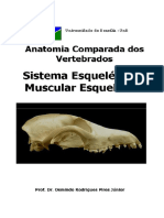 Apostila UnB Anatomia Comparada dos Vertebrados