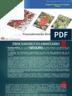 PROCEDIMIENTO MINERO ORDINARIO