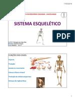 Aula Sistema Esquelético 1º ANO MEDICINA 17-03-2016