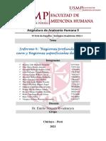 Informe 6 Anatomia Practica (2)