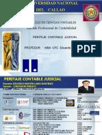 409809258 Peritaje Contable Judicial