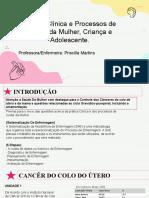 Prática Clínica e Processos de Cuidar Da Mulher(PRIMEIRA AULA)