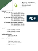 CV Maintenance Informatique