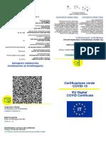dgc-certificate-1628250469116