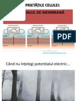 2_PROPRIETĂȚILE CELULEI POTENȚIAL ELECTRIC ADMITERE UMF