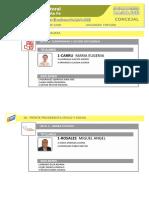 Precandidatos Concejales 9 de Julio