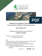 A Dinâmica Da Ocupação de Zonas Costeiras.O Caso de Vila Nova de Milfontes, Proposta de Intervenç