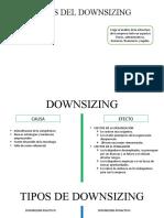 Ppt Downsizing