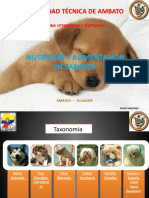 Nutricion Bases de Nutricion Canina