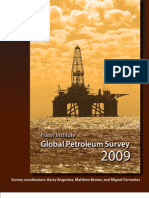 GlobalPetroleumSurvey2009