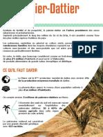 GreenDay Le Palmier Dattier