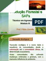 Aula Sucessão Florestal