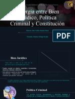 Sinergia entre Bien Jurídico, Política Criminal y Const