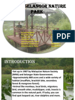 Natural Park Kuala Slangor final touch