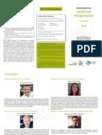 Programa - Derecho Probatorio (1)