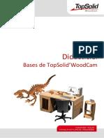 TopSolid.tt.WoodCam.basics.v6.14.Fr