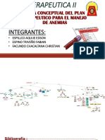 Plan Terapeutico de Terapia Para Anemias - Completo