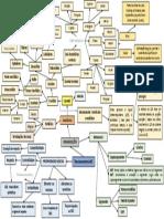 Mapa Mental Neuroanatomia#01