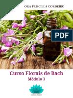 modulo3 florais
