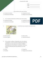 La composicion _ Print - Quizizz 5to. Sec.