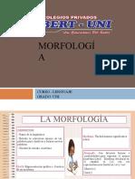 MORFOLOGIA UNI