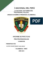 Modelo de informe de la escuela de la PNP