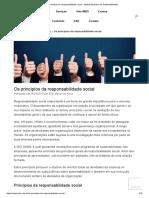 Princípios da responsabilidade social - Instituto Brasileiro de Sustentabilidade