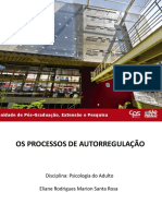 Apresentação sobre Processos de Autorregulação