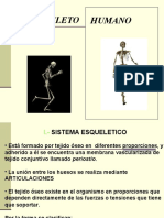 esqueleto_humano