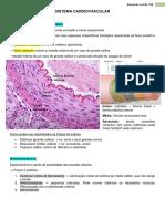 1. Sistema Cardiovascular
