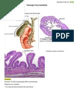 5. Patologia Hepatobiliar