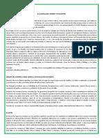ACTIVIDADES EVOLUCION DEL CASTELLANO