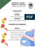 Proyecto Final Nutrición en El Embarazo (2)
