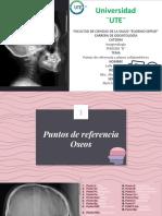 Puntos y planos cefalométricos