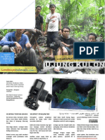 Ujung Kulon - mencari jejak odeng
