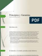 3.- Principios y Garantías del proceso penal