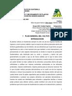 Plan general del cultivo.